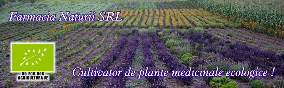 Farmacia Naturii - cultivator plante medicinale