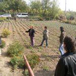 culturi-bio-cercetare-staff2