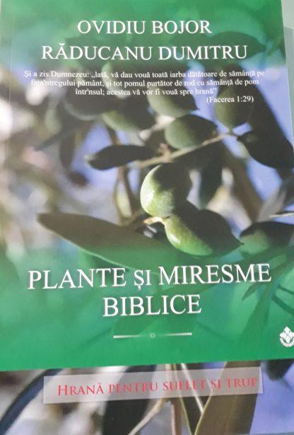 Plante de leac din Biblie