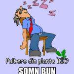 SOMN-BUN