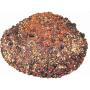 ceai-de-fructe-de-padure-vrac2