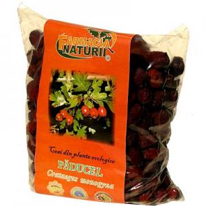 Ceai Paducel fructe uscate
