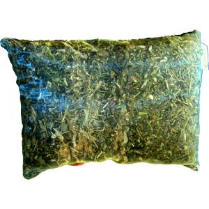perne-fitoterapie-plante1