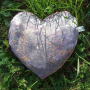 pernuta-cu-plante-inima