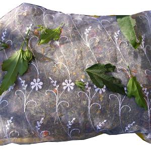pernuta-cu-plante-mare