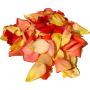 trandafir-petale-vrac