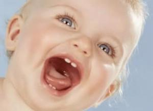 eruptia dentara