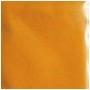 condiment-indian-turmeric-3