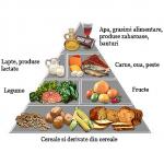 alimentatie-bio-piramida