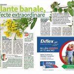 click-sanatate-plante-banale-efecte-extraordinare