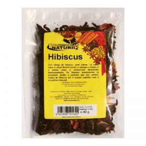 hibiscus-flori-intregi-1