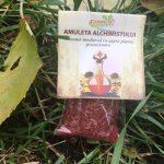 Amuleta alchimistului