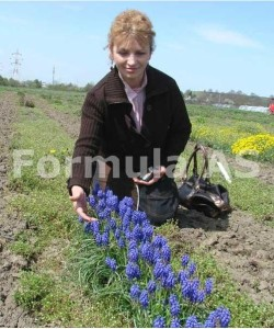 Calatorie-intr-o-gradina-cu-flori-formula-as-iuliana-barbu-1