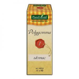 Polygemma 1 stomac - Plantextrakt