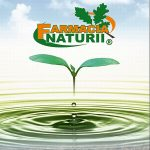 Tratamente naturiste Farmacia Naturii