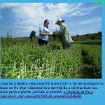 Fitoterapia-o-medicina-care-iubeste-omul-PREZENTARE-pag12