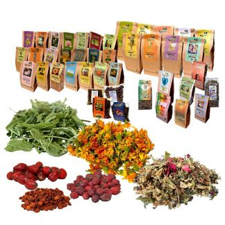 Ceaiuri ecologice din plante medicinale