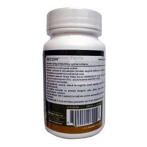 GInkgo-Biloba-60-mg-capsule-Jarrow-Formulas