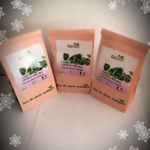 ginkgo-biloba-1-farmacia-naturii