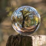 copac-glob