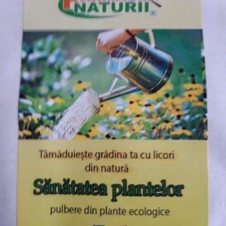 TRATAMENT PLANTE IN GRADINA