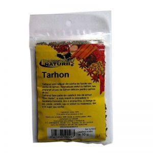 Condiment Tarhon Artemisia bracunculus