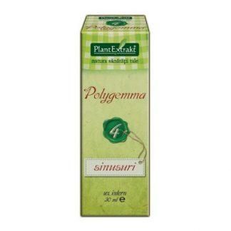 PlantExtrakt Polygemma 4 - sinusuri 30ml PLANTEXTRAKT