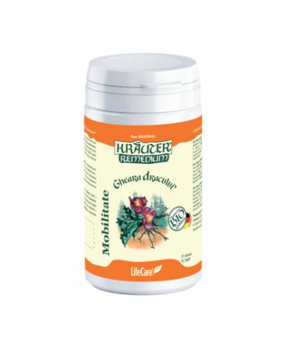 Antiinflamator